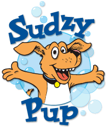 Handling all your dogs grooming needs in Southern Vermont!